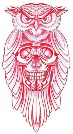 Owl. skull