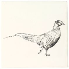 Pheasant - Woodland Animals - Wall & Floor Tiles  | Fired Earth