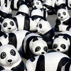 Jobs und Praktika beim WWF _ http://www.wwf.de/ueber-uns/stellenangebote/?area=Bild&newsletter=Infonewsletter/Change/2016/06/23/Elefanten/Stopp-Wilderei/194888&utm_source=infonewsletter-change&utm_campaign=Stopp-Wilderei  Möchten Sie gemeinsam mit uns für den Naturschutz arbeiten? Dann sehen Sie jetzt gleich auf unserer Internetseite nach, ob ein passender Job dabei ist. Neu dabei (unter anderem): Online Marketing Manager (m/w) Project Manager Anti Poaching (m/w) Pressereferent (m/w)   ©…