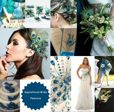 Hmm...really liking these Peacock Wedding Theme