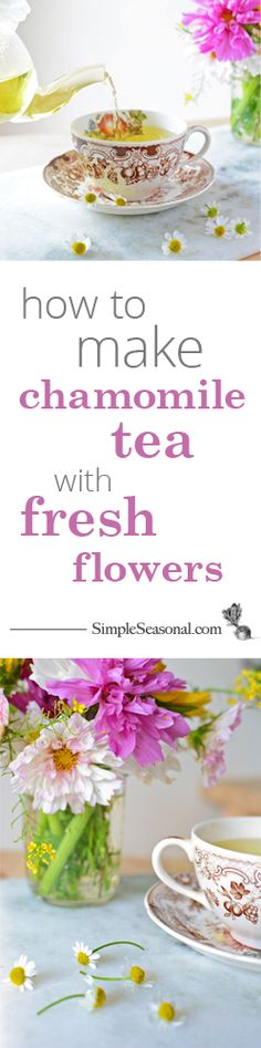 Ditch the bag, the string, and the bitterness and make your own fresh chamomile tea!