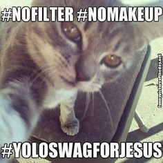 Funny Facebook Twitter Hashtag Cat No Filter No Makeup Yolo Swag For Jesus Selfie Humor