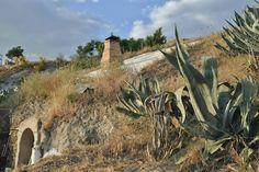La Buhardilla de Yaya: Chimenea  Andando por los caminos del Sacromonte, cerca de San Miguel alto, entre maleza y pitas divisamos las chimeneas de las cuevas.      Datos fotografía :      - ISO 400     - Apertura : F29     - Exposición : 1/60     - Focal: 55mm