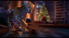 Vidéo Animation Noël - La Magie de Noël.. -