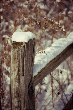 #winter #photography  Photo by A Little Bit Crunchy A Little Bit Rock and Roll