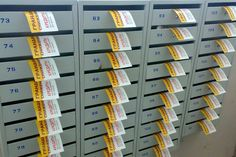 Безадресная рассылка и распространение листовок и газет