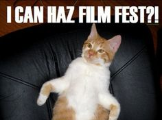 """Internet Cat Video Festival ...thanks to the Walker Art Center, I can pin this under """"Art"""""""