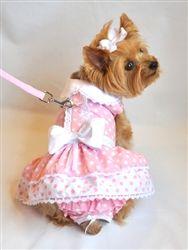 Pink Polka Dot and Lace Dog Dress Set