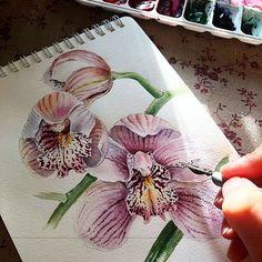 Watercolorist: @mti6 #waterblog #акварель #aquarelle #drawing #art #artist #artwork #painting #illustration #watercolor #aquarela