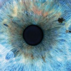 Hidden Organ in Our Eyes Found to Control Circadian Rhythms and Emotions: Scientific American