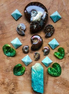 Ammonite, Amazonite and Cyclamen leaves  I touch the air and I taste  centuries of life on my fingertips I feel the words whirling through my veins  building into stories unheard I am all history here today and I am all life as I breathe you unto me  beyond time °Woodlights Woudlicht