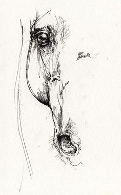 Arabian Horse Sketch 2014 05 24 D Print by Angel Tarantella