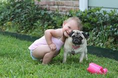 An Kety Pet Care. Get Your Dog Trained Today With These Simple Tips. Training your dog is important for an obedient relationship between you and your canine friend. During the training process, you and your dog will experien Cute Baby Dogs, Cute Babies, Dog Baby, Animals For Kids, Animals And Pets, Dog Pictures, Cute Pictures, Kids Sleep, Pug Love