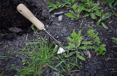 Weeds got you down? Not anymore with the Garden Hand Weeder! Weeding is no longer a pain with a tool that is designed for weeding. Don't dig large holes with Lawn And Garden, Garden Tools, Home And Garden, Pulling Weeds, Weeding Tools, Weed Killer, Garden Care, Outdoor Gardens, Grass
