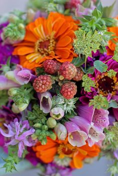 Zinnias and blackberries -- lavender, green and coral..this would make an awesome bouquet!