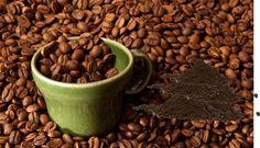 come possiamo usare fondi di caffè?? leggi scopri come clicca qui xc leggere http://multilink4.blogspot.it/2012/09/come-possiamo-usare-fondi-di-caffe.html?spref=fb