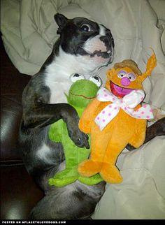 Teaka Loves The Sesame Street Gang
