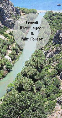 Travel guide for Preveli River Lagoon & Palm Forest, Rethymno, Crete