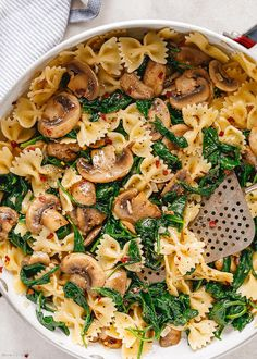 Parmesan Spinach Mushroom Pasta Skillet - Super quick and impossible to mess up! This parmesan spinach mushroom pasta skillet is the ultimate win for vegetarian weeknight dinners! Easy Pasta Recipes, Healthy Dinner Recipes, Chicken Recipes, Spinach Pasta Recipes, Spinach Dip, Potato Recipes, Vegetable Recipes, Beef Recipes, Spinach Mushroom Pasta