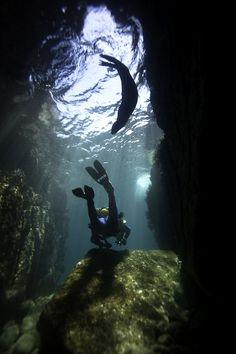 La magia de la naturaleza en Cabo Pulmo, Los Cabos. Nature's Magic at Cabo Pulmo, Los Cabos, Mexico. visit us @ http://travel-buff.com/