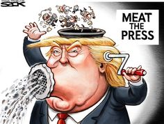 Image result for trump press conference cartoon