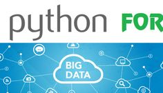 Many Remote DBA Experts Recommend Python