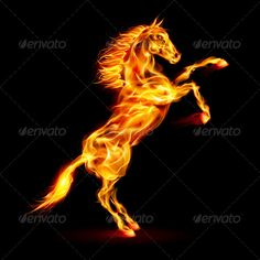 Fire Horse Rearing Up — Vector EPS #burn #blaze • Available here → https://graphicriver.net/item/fire-horse-rearing-up/5972501?ref=pxcr
