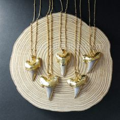WT-N757 Natural Real Shark Teeth Jewelry NecklaceFashion