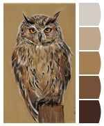 ColorSnap by Sherwin-Williams – ColorSnap by lalaarnett New Image, Your Image, Good Color Combinations, Sherwin William Paint, Paint Colors, Owl, Palette, Bird, Animals