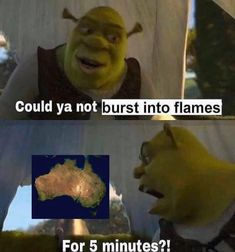 Shrek speaks on behalf of all Australians… 22 Dank Memes To Make You Laugh Jump into the meme stream and enjoy. Stupid Memes, Dankest Memes, Funny Jokes, Hilarious, Stupid Funny, Funny As Hell, The Funny, Crazy Funny, Funny Images