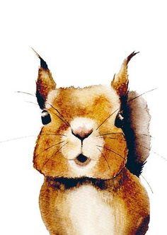 Henna Adel, Postikortti, Orava