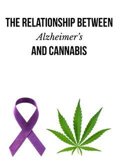 The relationship between Alzheimer's and cannabis   massroots.com