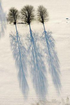 Winter Shadows | Express Photos