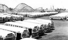 Publis Service buses at gate of Palisade's Amusement Park/ NJ Palisades Amusement Park, Palisades Park, Service Bus, Public Service, Jersey City, New Jersey, Cliffside Park, Bus City, Buses And Trains