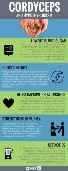 Cordyceps: A Thyroid's Best Friend | Hypothyroidism Series from StressRX | Cordyceps Benefits | Adaptogenic Supplements