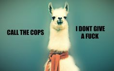 Call the cops Calls the cops because this lama don't give a fuck Discussion, Le Web, Favorite Words, Favorite Quotes, Favorite Things, Hipsters, Out Loud, 6s Plus, Iphone Case Covers