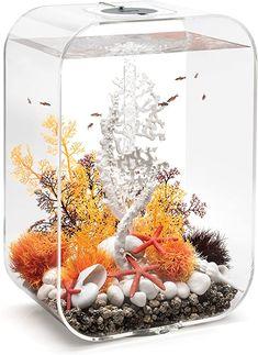 biOrb Life 60 Aquarium with MCR - 16 Gallon, Transparent Mini Aquarium, Home Aquarium, Aquarium Design, Aquarium Fish Tank, Aquarium Set, Biorb Fish Tank, Betta Fish Tank, Saltwater Tank, Saltwater Aquarium