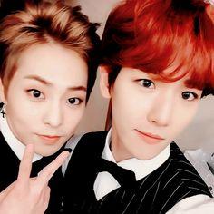 Kim Min Seok (Xiumin) and Byun Baek Hyun (Baekhyun) Exo Xiumin, Exo Ot12, Kpop Exo, Gentlemans Club, Cute Funny Pics, Exo Facts, Exo Couple, Xiuchen, Exo Korean