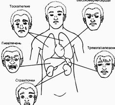 Экология здоровья. Взаимоотношения между эмоциями и Элементами важны для диагностики. Склонность к вспышкам гнева является проявлением дисбаланса в Дереве (обычно обусловленное повышением Ян Печени). Эмоция может быть подавлена и не проявляться внешне; тогда это подавленный гнев.