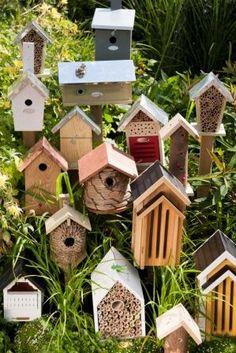 Tuintrends 2013!  Je eigen insecten/vogel-hotel in je tuin! Vlinderhuisjes, eekhoornhuisjes, bijenhuisjes, vogelhuisjes en andere huisjes, over een tijdje allemaal verkrijgbaar in de webshop 'Warentuin'. Alles voor huis, tuin en dier