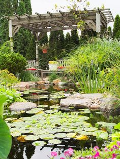 Water Garden Getaway  A beautifully weathered pergola is the perfect vantage point for taking in views of your pond. In a large water feature, fish, birds, and butterflies become major attractions. Though a large pond requires more maintenance than a small one, it's more ecologically stable.