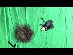 Coco kan het! (Nationale Voorleesdagen 2021) - YouTube 4 Kids, Kids Education, Coco, Activities For Kids, Winter, Close Reading, Projects, School, Animals