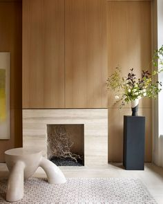 Fireplace and Walls