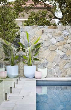A sugary sweet pastel pot cluster looking great against a the natural stone wall and bluestone tiling. Stone Around Pool, Plants Around Pool, Pool Plants, Potted Plants, Backyard Pool Designs, Swimming Pool Designs, Backyard Landscaping, Swimming Pools, Landscaping Ideas