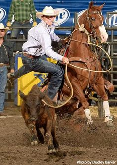 Joe Beaver and fast dismount---He's the man! Rodeo Cowboys, Hot Cowboys, Real Cowboys, Western Riding, Western Art, Hot Country Boys, Country Life, Cowgirl Pictures, Rodeo Events