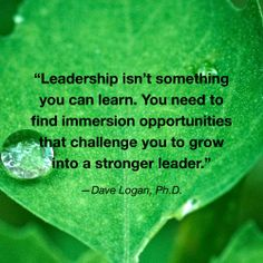"""""""Leadership isn't something you can learn. You need to find immersion opportunities that challenge you to grow into a stronger leader."""" - Dave Logan 