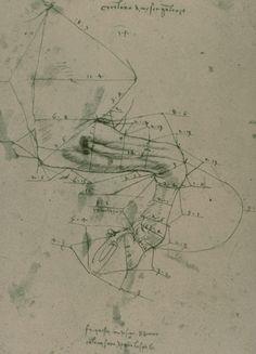 How does a horse move his leg?, drawing by Leonardo da Vinci Renaissance Men, Italian Renaissance, Horse Anatomy, Slytherin House, Old Tools, Patent Prints, Michelangelo, Archetypes, Horses