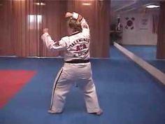 Sheldon Family Taekwondo ATA Purple Belt Form