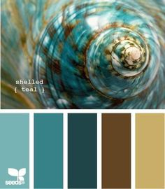Teal and chocolate brown....with pale green and cream, not yellow of course