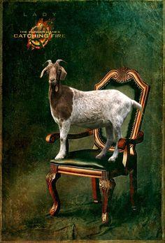 """6 Portraits """"Hunger Games"""" Should've Made"""